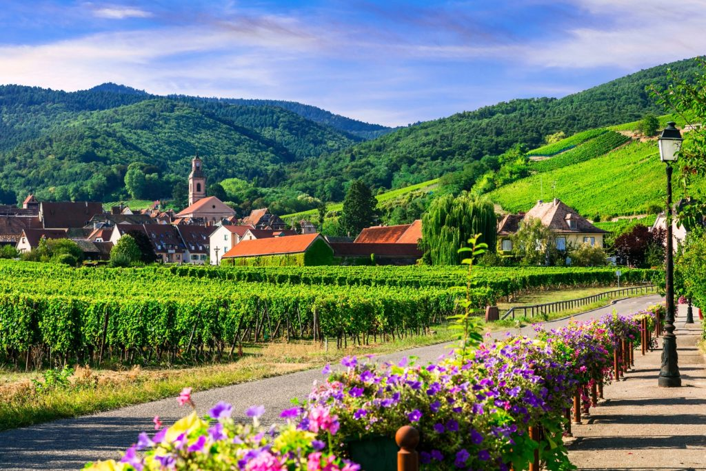 Винодельческие регионы Франции