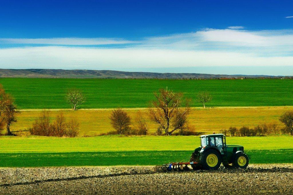 Характеристика сельского хозяйства Франции