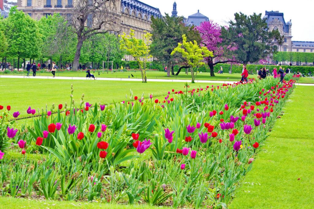 Сад Тюильри в Париже фото