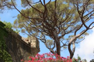 Jardin Romieu Bastia