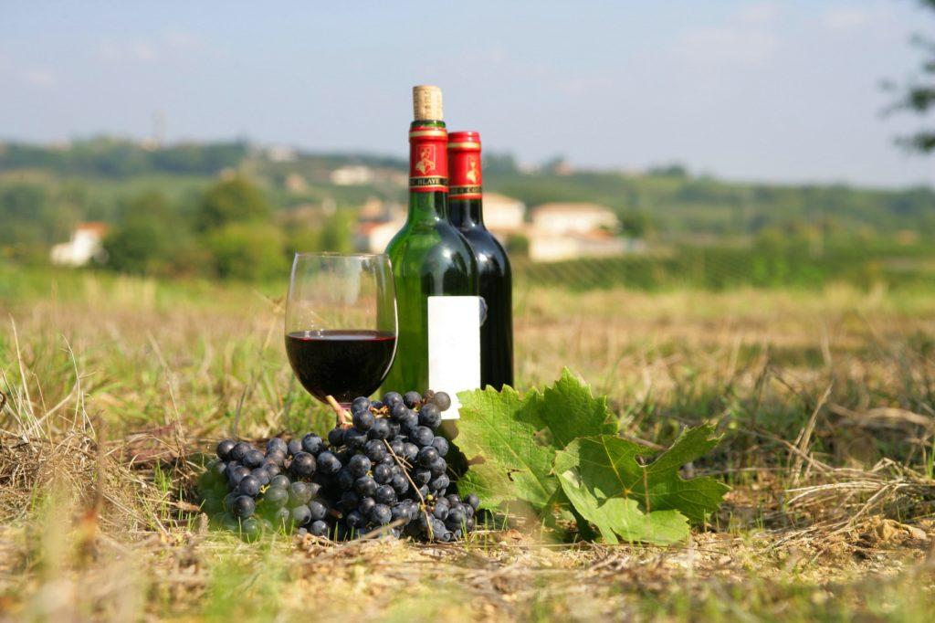 Французское вино Бордо