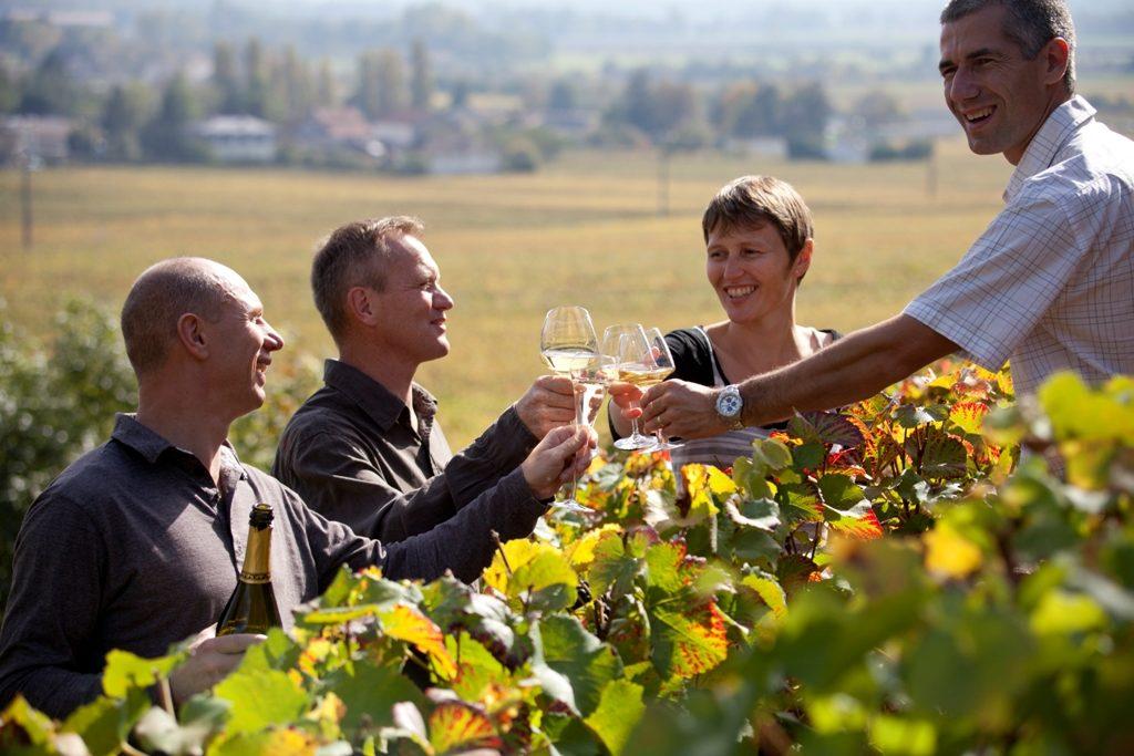 Цвет бургундского вина