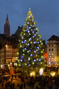 Большая Елка на площади Клебер в Страсбурге