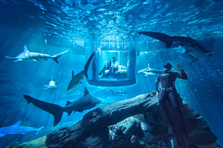 Парижский аквариум советы туристам